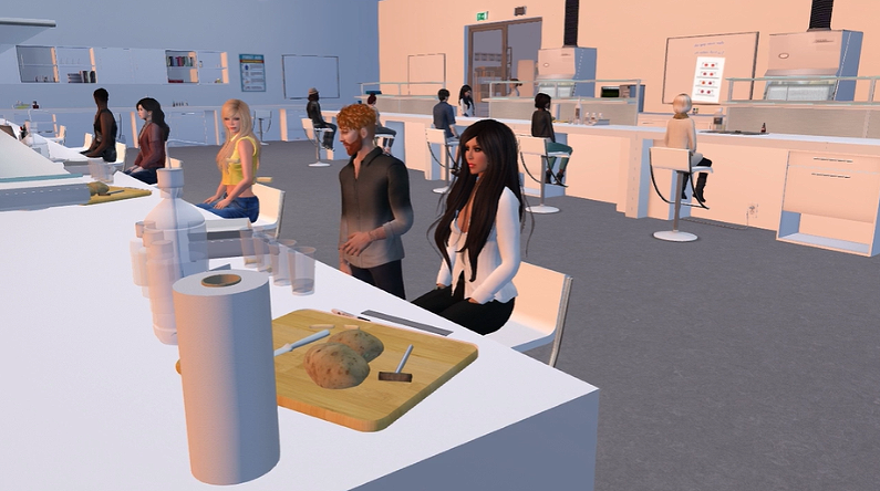 Why Should Instructors Be Present in Virtual Learning Environments?